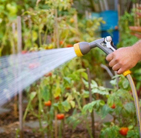 Garden Watering & Accessories