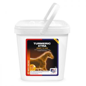 Equine America Turmeric - 3kg