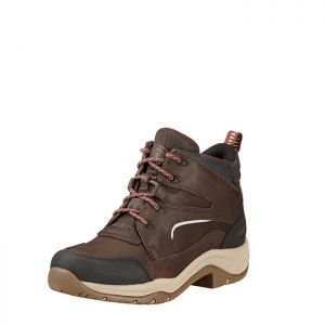 Ariat Women's Telluride II H20 Boots – Dark Brown
