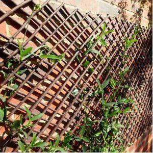 Smart Garden Expandable Willow Trellis - 1.8m x 0.9m