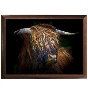 Country Matters Lap Tray - Highland Bull