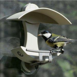 The Nuttery Window Bird Seed Feeder