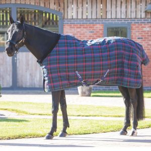 Shires Tempest Plus 100 Staple Rug - Green Check