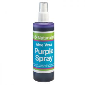 NAF NaturalintX Aloe Vera Purple Spray - 240ml