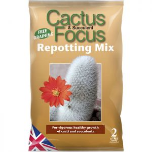 Growth Technology Cactus Focus Peat Free Repotting Mix - 2L
