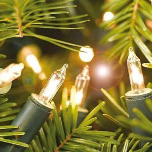 Alderbrook 100 Indoor Shadeless Lights - Clear