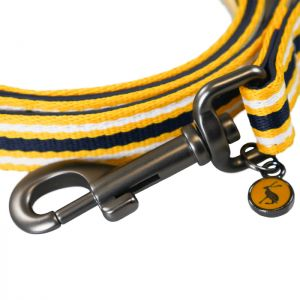 Doggy Joules Coastal Lead - Yellow