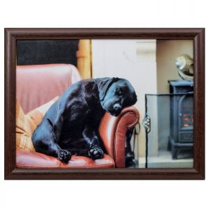 Country Matters Lap Tray - Sleeping Labrador