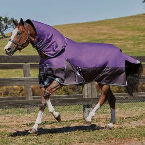 Weatherbeeta ComFiTec Plus Dynamic Detach-A-Neck Medium - Purple/Black