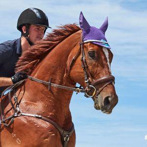 Weatherbeeta Marble Ear Bonnet – Purple