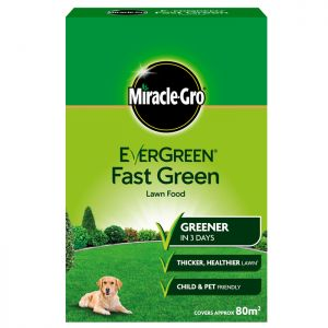 Miracle-Gro Evergreen Fast Green Lawn Food - 80m²