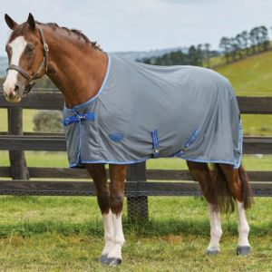 Weatherbeeta Ezi-Dri Standard Neck Rug - Grey/Blue