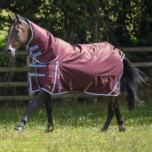 Gallop Trojan Xtra 350g Combo Turnout Rug – Burgundy/Sky Blue