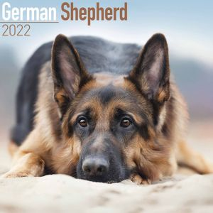 German Shepherd Calendar – 2022