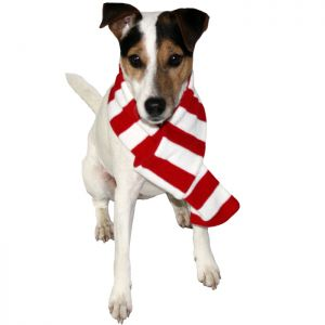 Good Boy Striped Christmas Scarf For Dogs