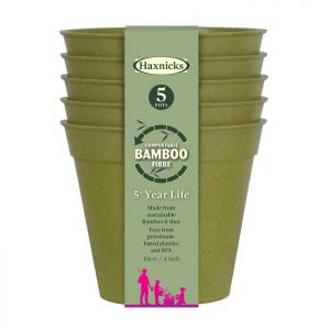 "Haxnicks Compostable Bamboo 4"" Pack of 5 Plant Pots – Sage Green"