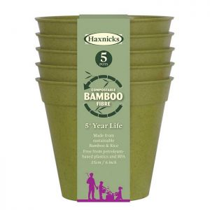 "Haxnicks Compostable Bamboo 6"" Pack of 5 Plant Pots – Sage Green"