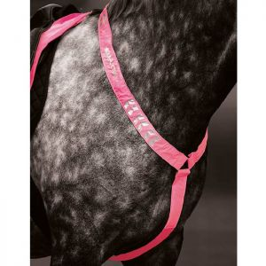 EQUI-FLECTOR Breastplate - Pink