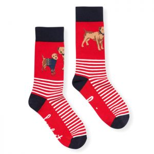Joules Women's Brill Bamboo Socks – Red Dog