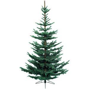 Everlands Nobilis Fir Christmas Tree - 7ft