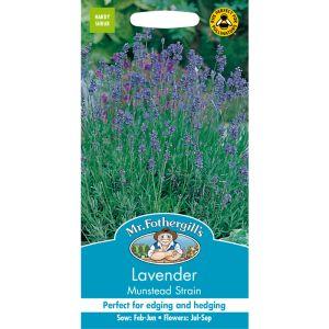 Mr Fothergill's Munstead Strain Lavender Seeds