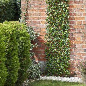 Smart Garden Expanding Trellis - Lemon Leaf, 1.8m x 0.9m