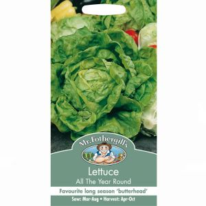 Mr Fothergill's All the Year Round Lettuce Seeds