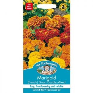 Mr Fothergill's Mixed French Dwarf Double Marigold Seeds