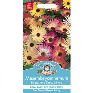 Mr Fothergill's Mesembryanthemum Seeds