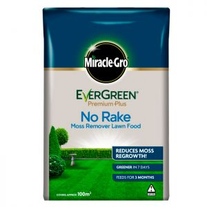 Miracle Gro Evergreen No Rake Lawn Food - 100m²