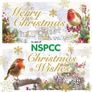 NSPCC Traditional Robin Christmas Cards - 12 Pack