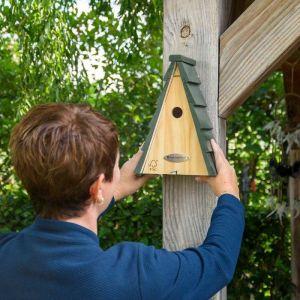 National Trust Aspen Larch Nest Box - 28mm