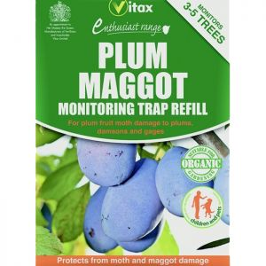 Vitax Plum Maggot Trap refill