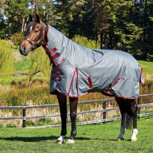 Weatherbeeta ComFiTec Plus Dynamic Combo Neck Medium Rug - Grey/Burgundy