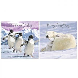 Polar Bears & Penguins Christmas Cards – 12 Pack