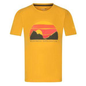Regatta Children's Bosley III Printed T-shirt, Glowlight Print – Yellow