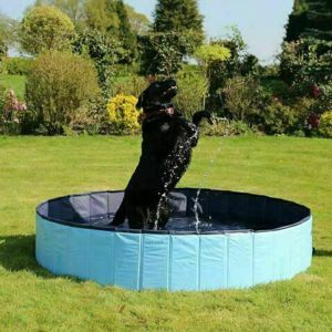 Rosewood Foldable Pet Pool - 120cm x 30cm