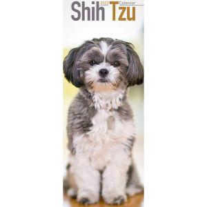Shih Tzu Calendar – 2022