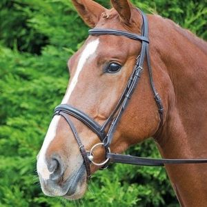 Aviemore Comfort Fit Bridle