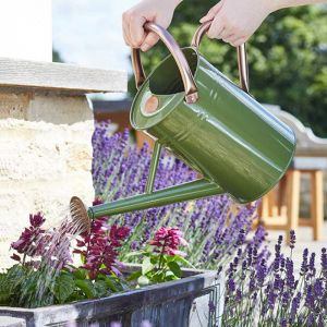 Smart Garden 4.5L Watering Can – Sage Green