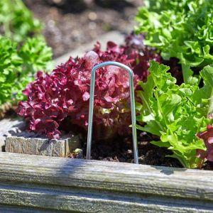 Smart Garden Gardening Staples – Pack of 10