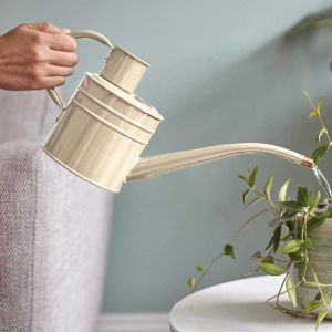 Smart Garden Home & Balcony 1L Watering Can – Ivory Cream