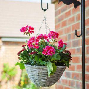 Smart Garden Sable Willow Hanging Basket – 12in