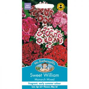Mr Fothergill's Mixed Monarch Sweet William Seeds