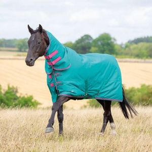 Tempest Original 100 Combo Neck Turnout Rug - Green/Pink