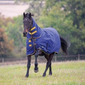 Shires Tempest Original 300 Turnout Combo Rug - Navy