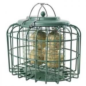 The Nuttery Oval Suet Cake & Fat Ball Feeder