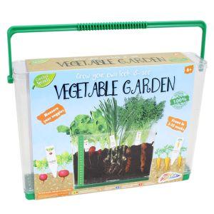 Creative Sprouts See Through Vegetable Garden
