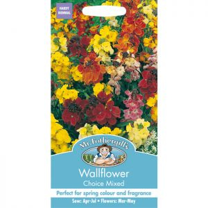 Mr Fothergill's Mixed Wallflower Choice Seeds