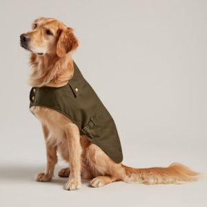 Doggy Joules Waxed Jacket - Olive